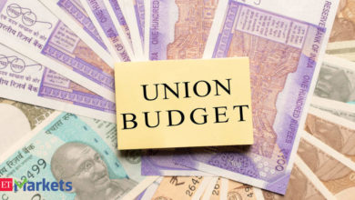 Income tax rules: Budget had marginal income tax relief, compliance streamlined