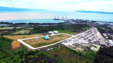 Anflo ecozone and the Davao International Container Terminal