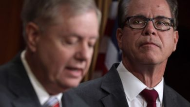 Key GOP senators say they are open to corporate tax hikes