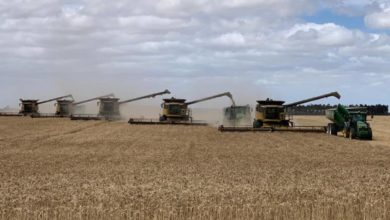 Prepay Plus gives Beaumont Cropper a boost in cash flow management and Farm Weekly tax planning