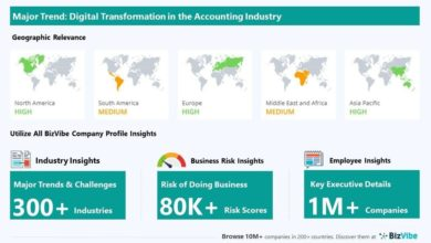 Digital Transformation with Powerful Impact on Accounting, Tax Preparation, Bookkeeping, and Payroll Discover Business Insights for the Accounting Industry |  BizVibe |  National