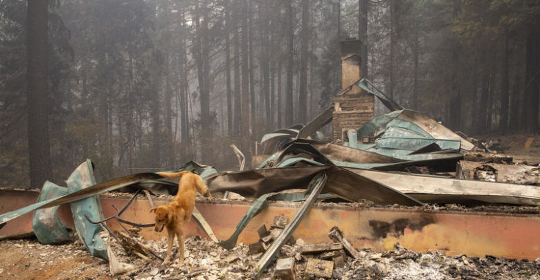 Legislators approve draft law to streamline property tax relief for forest fire victims