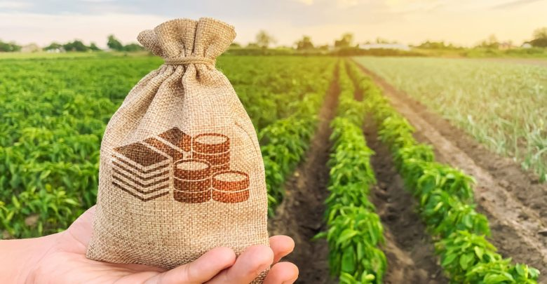 Bill offers tax breaks in support of credit gains in rural rural