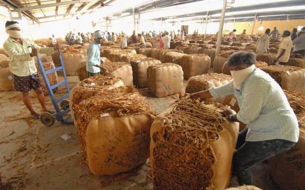Indian tobacco is aiming for a 5% tax break to boost exports
