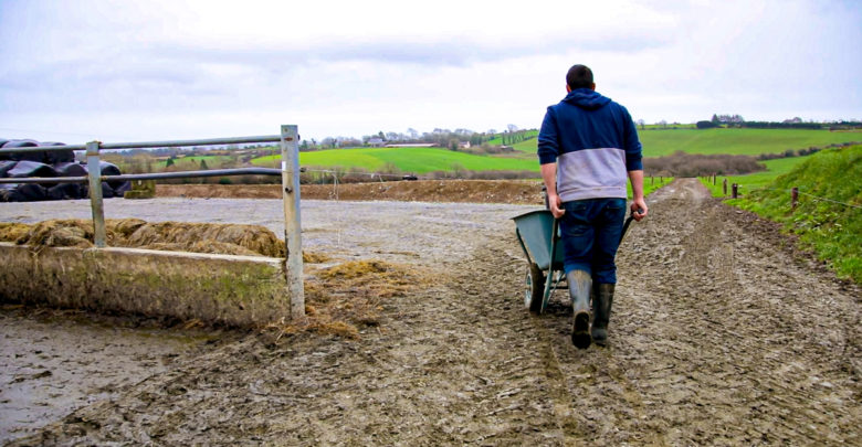 'Possible inconsistencies' in farmer tax relief age limits