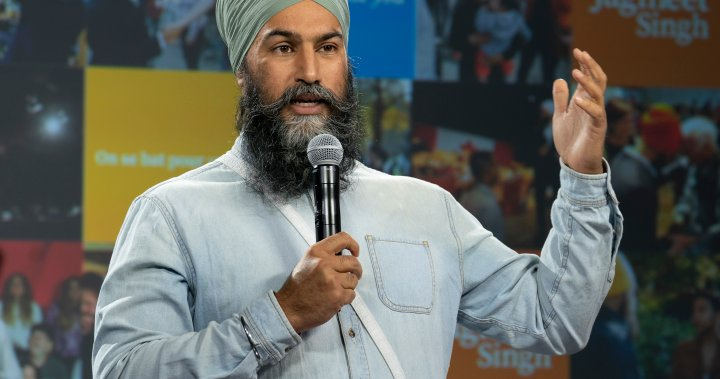 NDP's Singh reiterates pledge to tackle corporate loopholes and tax fraud - National