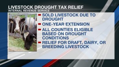 IRS offers tax breaks to livestock farmers affected by drought