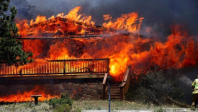 Sen. Borgea's tax breaks for forest fire victims on Newsom's desk