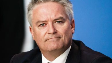 Cormann of the OECD calls for a corporate tax plan    The young witness