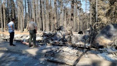 Property tax relief for forest fire victims possible