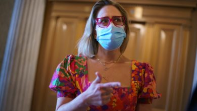 Sinema leaves DC for a high-end corporate fundraiser as it blocks the expense account of Biden - mom Jones